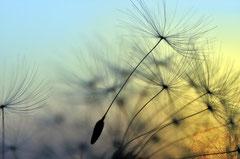 Healing Codes © supertramp8 - Fotolia.com