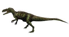 Bild eines Chilantaisaurus
