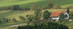 Wunderbarer Schwarzwald
