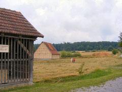 Im Odenwälder Freilandmuseum