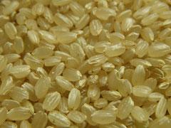 玄米生活習慣整体