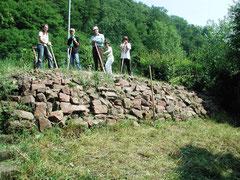Trockenmauer für Zauneidechsen