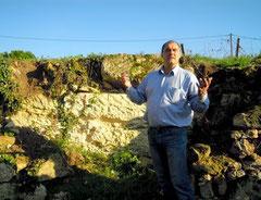 Visite guidée. Rocher calcaire dans le vignoble d'un domaine St.Emilion