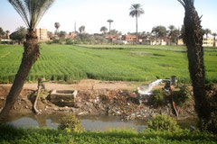 Along the Nile, close to El Minya, three hours south of Cairo
