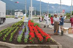 フラワーロード陸前高田にて苗の植付け完了