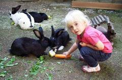 So werden Kinder und Kleintiere Freunde.