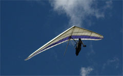Drachen, sie können sehr schnell fliegen