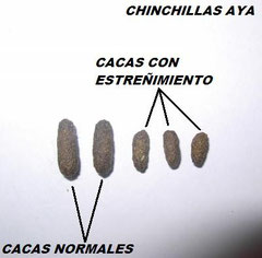 Comparación de heces