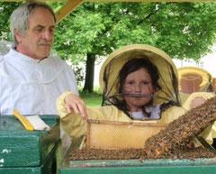 Durchsicht am Bienenlehrstand Kloster Grauhof