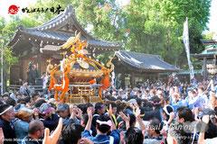 牛嶋神社大祭・宮入渡御:三十二番〈向島一丁目〉