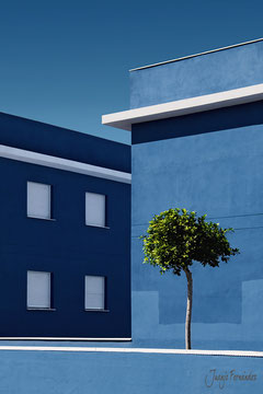 arquitectura y natura | Juanjo Fernández