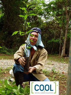 Photo by ForestFinance