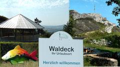 Burgruine Waldeck auf dem Schloßberg im Naturpark Steinwald