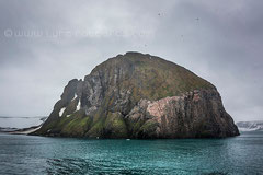 Hooker Insel, Rubini Rock