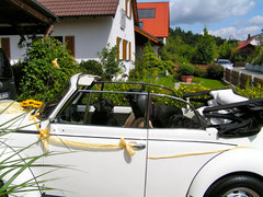 Hochzeitskäfer