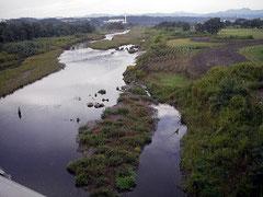 多摩川 釣りのポイント 多摩大橋から上流