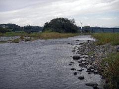 多摩川 釣りのポイント 多摩大橋と八高線鉄橋の中間