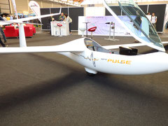 GP 11 Pulse von GP Gliders, Polen