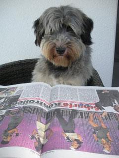 Tobi ist immer gut informiert :)