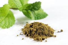 Stevia-Extrakt wird aus Pulver der Stevia-Pflanze hergestellt
