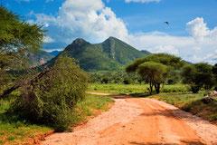 Tsavo Est et Ouest