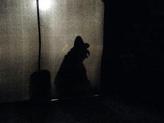 Schattenspiel: Der Schatz im Burgstock