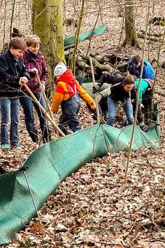 Aufbau des Amphibienschutzzaunes am Waldkater. - Foto: Johanna Land