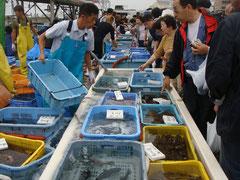 塩屋漁港大漁祭