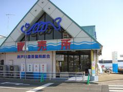 神戸市漁業共同組合 直売所