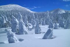 樹氷原コース上から.