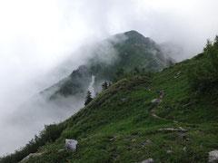 標高2100mを超えるあたりで霧の中から姿を現した毛勝山