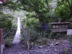ゆらゆらと縦にも横にも揺れる畑薙大吊り橋。