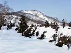 赤禿山 1158m