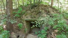 Teerofen im Lußhardtwald