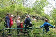 Einige der Teilnehmer beim Betrachten des Mammutbaums in der Nähe des Vogelparks