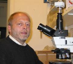 Ao. Univ.-Prof. Dr. Johannes WEBER