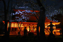 写ッセ 歴史文化部門賞 No.40617 本山 浄興寺 竹田 耕隆(上越市)