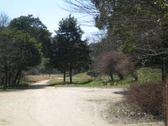 元々民家があった場所で、緩やかなカーブの道が続きます。