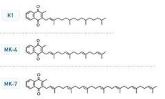 Рисунок 1. К1 – Витамин К1. Филохинон.  МК-4 и МК-7 – Менохиноны с длинной алифатической цепи из 4 или 7 звеньев