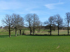 Campagne Limousin