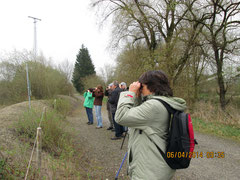 Beobachtung an der Vogelinsel Foto K-H Kuhn