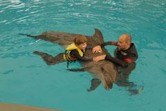 Image:Dolphin Therapy Antalya