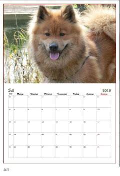 Ronja als Juli-Model im EFD Kalender 2016 ... der Kalender kann im EFD Shop bestellt werden >>>