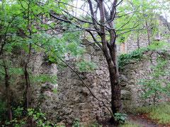 Burg Rauheneck, südliche Vorburg