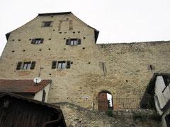 Burg Wolfsegg, Palas