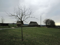 Eisenzeithaus, Venne