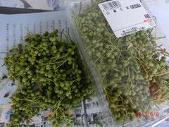 *実山椒♪ 綺麗な緑色です!