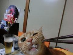 「うんみゃい♪うんみゃい♪蟹、最高~!!」