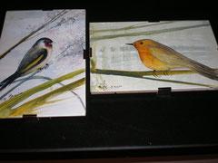 Angela's birds