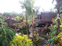 Vista dalla casa della Guci Guesthouse in Ubud (Photo by Gabriele Ferrando)